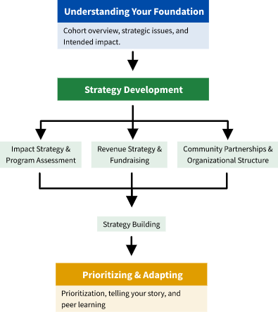 Overview of the reimagining strategy cohort pathway.